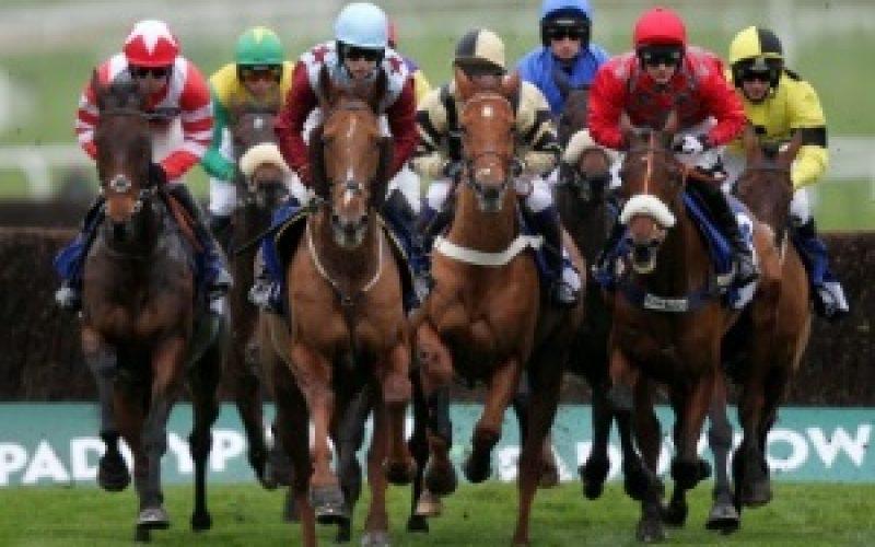 Corridas de Cavalos em directo na Bola TV