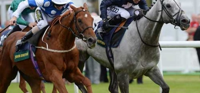 Cavalos PSI correm mais rápido