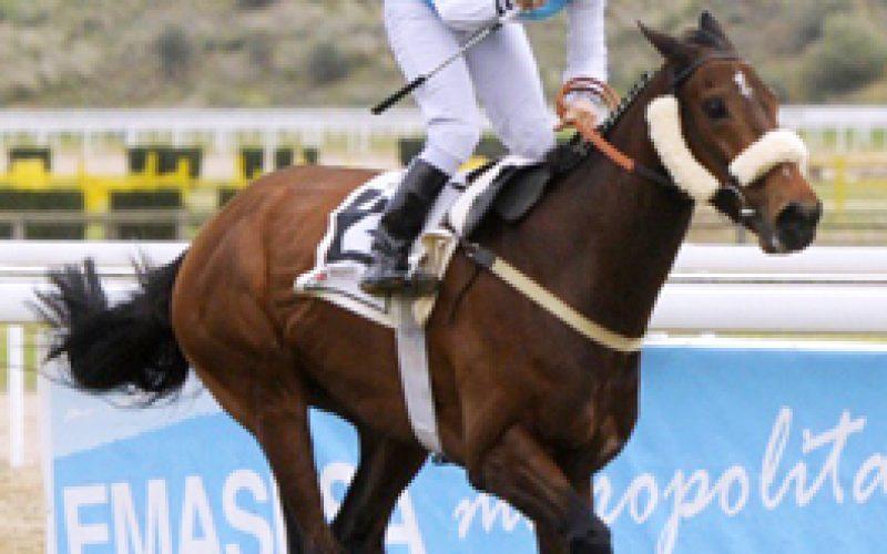 Jockey Luso Marino Gomes regressa este domingo às pistas!
