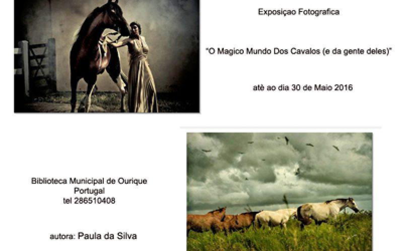 """""""O Mágico mundo dos cavalos… (e das pessoas deles)""""  – Exposição de fotografia – Paula da Silva"""