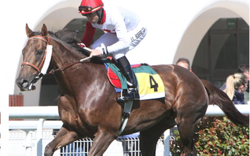 Richelieu (FR), 3º segundo consecutivo em provas internacionais (VÍDEO)