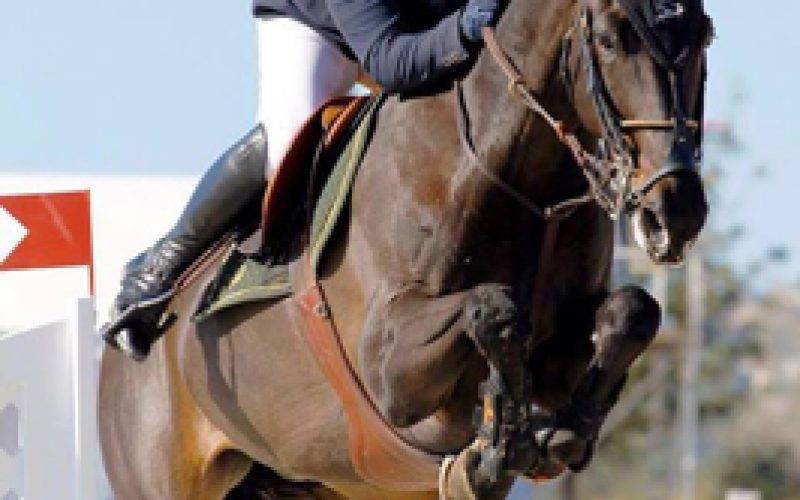 CSI2* Madrid: Luís Sabino Gonçalves termina no pódio do Grande Prémio