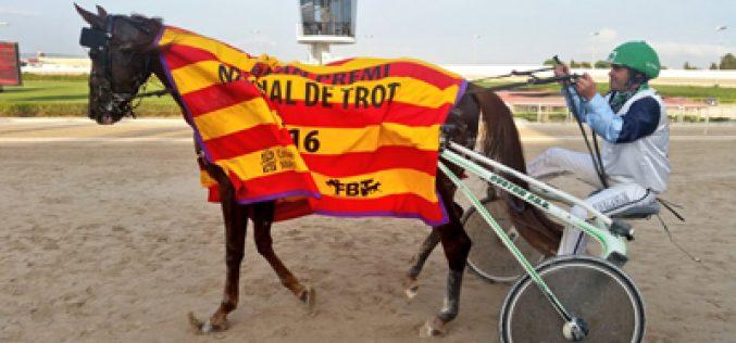 Trote : 83º Grande Prémio Nacional de Trote (espanhol) (VÍDEO)