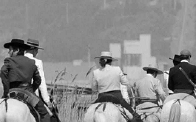 Quinta do Bulhaco aposta no Turismo Equestre