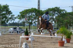 Resultados: 2ª Jornada do Campeonato Regional de Equitação de Trabalho