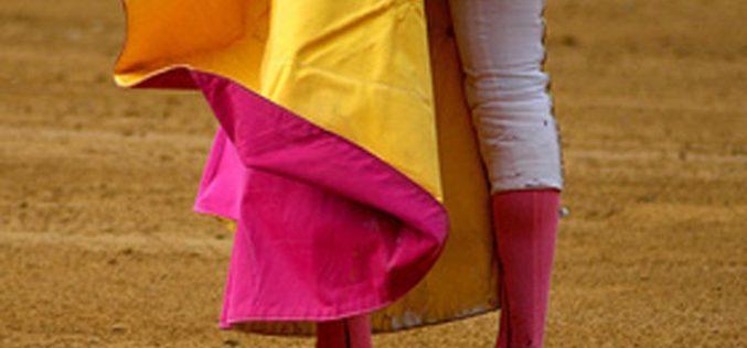 Parlamento chumbou projetos de lei para proibir apoios municipais atividades tauromáquicas