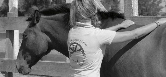 Reiki: Curso vocacionado para praticantes de equitação