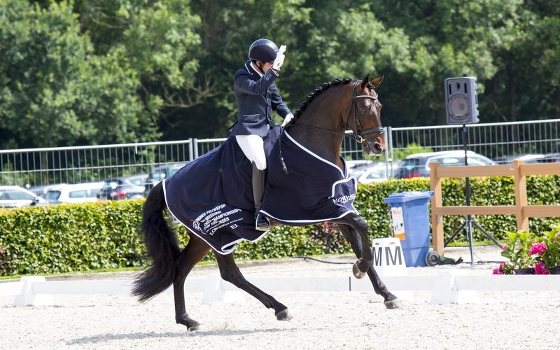 World Breeding Dressage Championships: Spanish Severo Jurado riding Fürst William the best four-year-old stallion