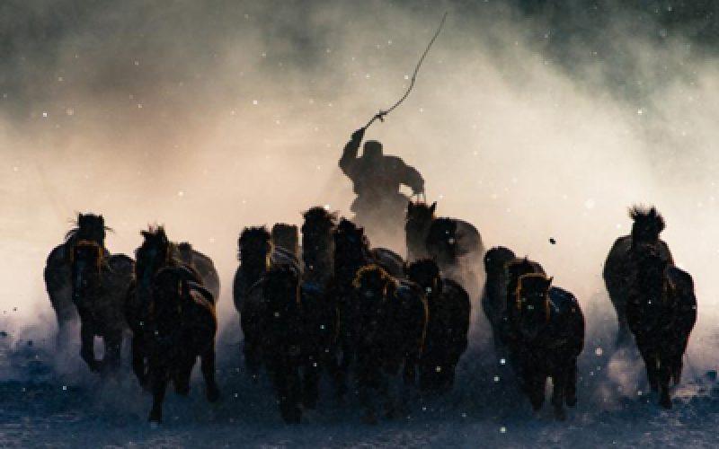 Imagem de cavaleiro da Mongólia vence concurso de fotos da National Geographic