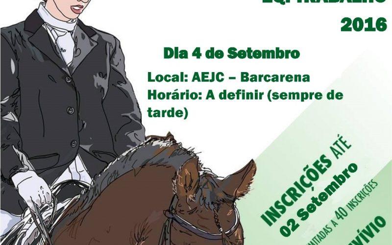 6º Concurso Especial de Dressage, Paradressage e Ensino de Equitação de Trabalho