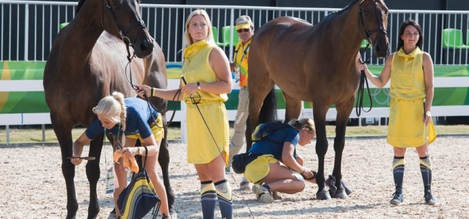 Rio 2016:   Swedes steal the show as horse inspection gets Olympic Eventing underway