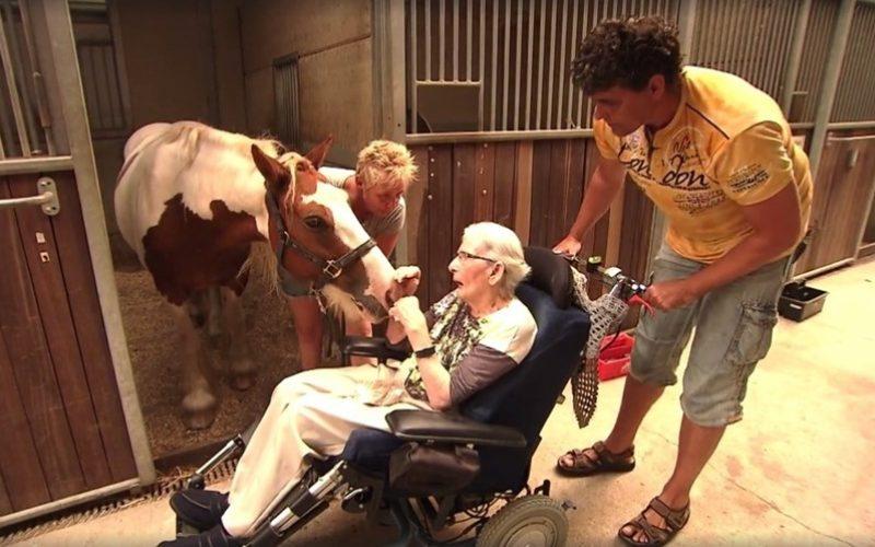 Aos 87 anos, idosa com Parkinson viu o seu último desejo concretizado (VÍDEO)