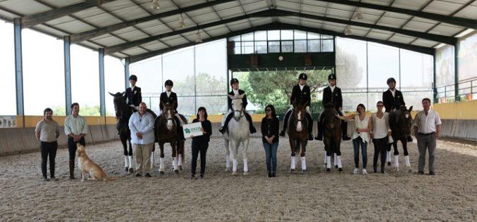 Academia Equestre João Cardiga assinala Dia Europeu do Cavalo, na Feira do Cavalo de Lisboa