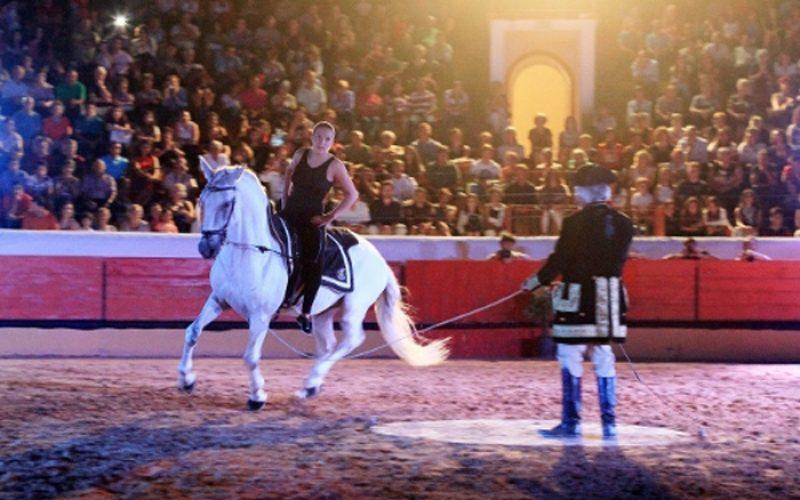 Gala equestre solidária para apoiar Cáritas de Tomar