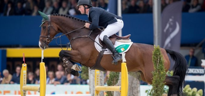 KWPN, Irish and Zangersheide studbooks claim 2016 FEI World Breeding Jumping titles