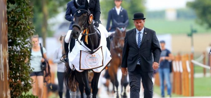 CSI2* Brussels: The 2016 Stephex Masters has kicked off!