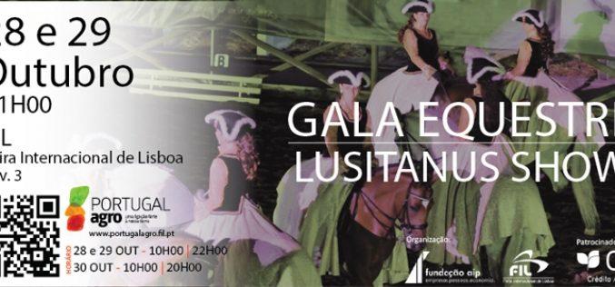 Gala Equestre Lusitanus Show