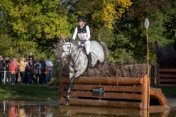 Burton and Klimke take Young Horse Eventing gold at Le Lion: Selle Francais Studbook claims overall title