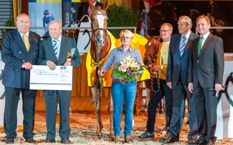 "Hanoverian Mare of the Year 2016: Donna Carara – ""She is special"""