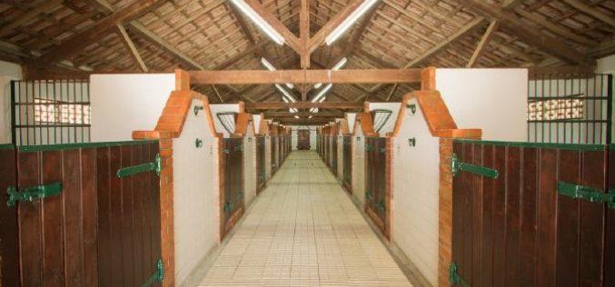 Companhia das Lezírias disponibiliza espaço para projecto equestre