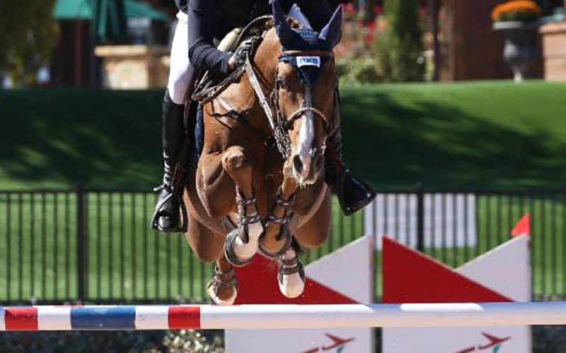 David Will earned a major victory in the $35,000 Horseware® Ireland
