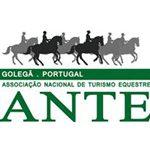 ANTE – Associação Nacional de Turismo Equestre (FEP Nº 4017) 2*