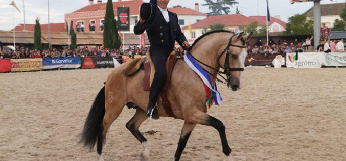 «GUARDIÃO DO PENEDO» – O Lusitano Campeão dos Campeões na Golegã 2016