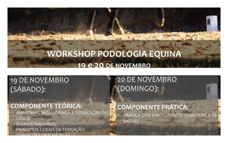 Workshop Podologia Equina