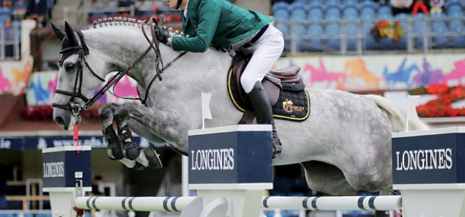 O Goresbridge Supreme Sale of Showjumpers 2016 superou expectativas (VÍDEO)