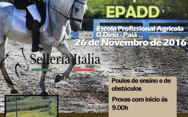 IV Festival Hípico EPADD – 26 de Novembro