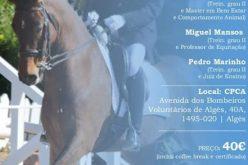 Como treinar cavalos para competição sem comprometer o bem-estar