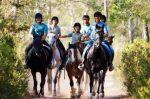 Turismo Equestre Internacional (Espanha)