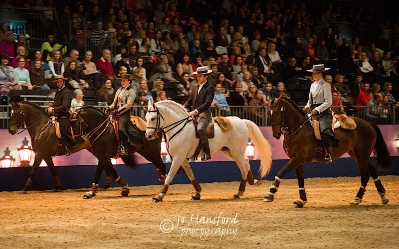Olympia Horse Show 2016: Pride of Portugal