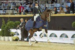 CDI4* Mechelen: Jorinde Verwimp ganha o Grande Prémio; Filipe Canelas Pinto em oitavo
