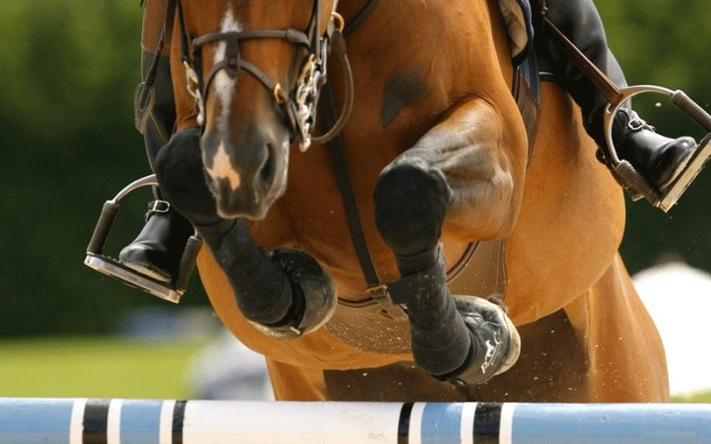 Cavaleiros portugueses a competir além-fronteiras