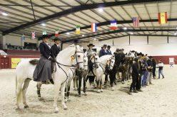 CEIA termina 2016 com Poule de Equitação de Trabalho