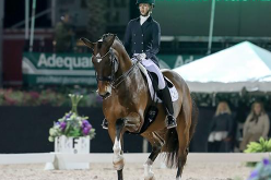AGD Wellington: Laura Graves took their second victory in the FEI Grand Prix Freestyle (VIDEO)