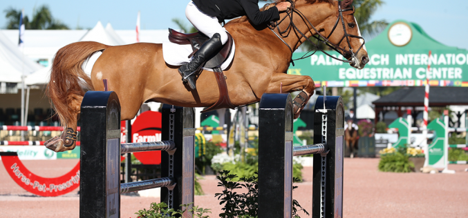 WEF 2017: Todd Minikus rode Zephyr to victory in the speed class