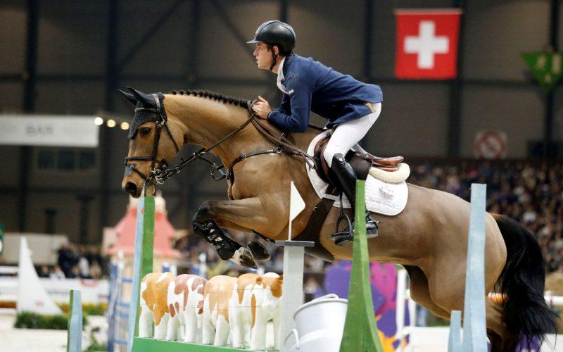 «Ursula XII» ganhou mais de 1 milhão de euros em 2016