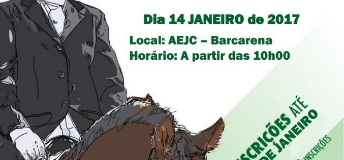 Academia Equestre João Cardiga inaugura picadeiro Cardiga Equus Park Oeiras