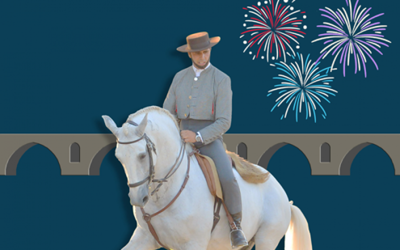 Feira do Cavalo de Ponte de Lima 2017