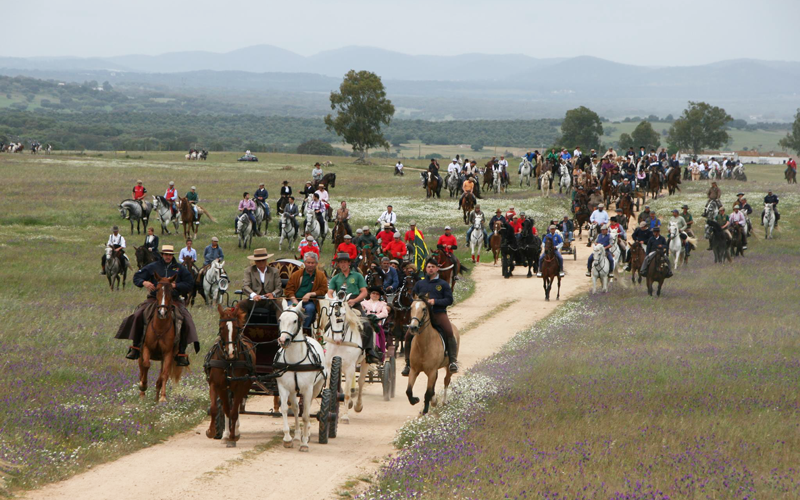 Romaria a cavalo Moita- Viana do Alentejo já tem datas