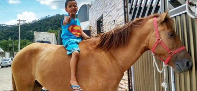 Ladrão devolve cavalo roubado a menino doente