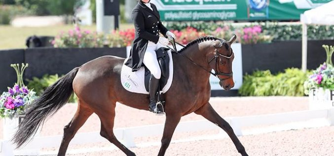 Land Rover Wellington Eventing: Marilyn Little takes the lead