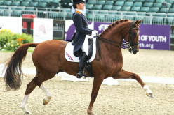 Farewell to a dressage legend: Parzival