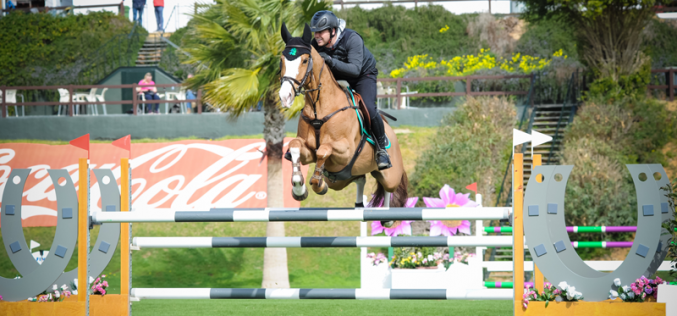 Sunshine Tour: Bertram Allen and Douglas Duffin winners of the 7 yr old classes
