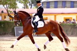 Juan Antonio Jiménez reforça a sua quadra com dois novos cavalos (VÍDEO)