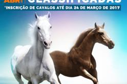 CEIA: 1º Leilão de Cavalos agendado para 5 de Abril