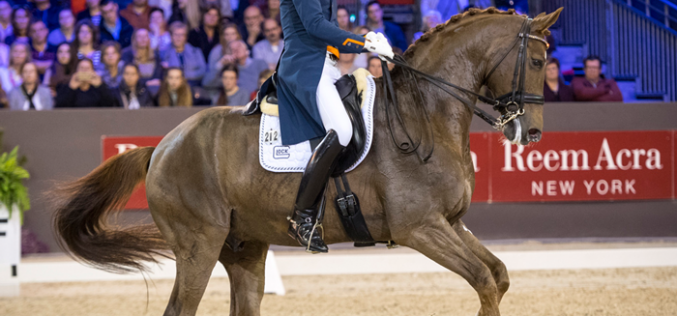 Masterful Minderhoud wins last leg in 's-Hertogenbosch (VIDEO)