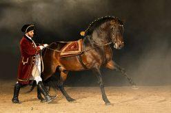 Gala de Abril da Escola Portuguesa de Arte Equestre